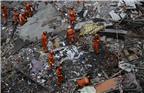 截至10时,救援现场已搜救出9人,其中4人确认死亡。现场救援仍在进行。图为救援现场。