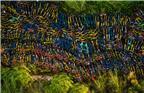 """2017年9月28日报道,在深圳福田区华强北茂业百货后面的一块空地,近日被放置了过万辆各品牌共享单车。从空中俯瞰,各色共享单车密密麻麻,真让人有点""""密集恐惧""""。"""