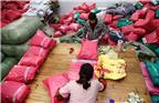 """2017年11月7日,工作人员在志浩村一家家纺企业包装家纺产品。随着""""双十一""""的临近,在全国首批淘宝村、江苏省电子商务示范村志浩村里,数千家纺从业者、电商从业人员迎来了又一个忙碌时期。中国最大的家纺市场""""南通家纺城""""就坐落在江苏省南通市通州区川姜镇志浩村,南通家纺城现集聚家纺企业3000多家、各类经营户5000多家,2016年销售额达600多亿元。"""