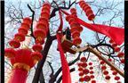 2018年2月8日,沈阳市五里河街道在所辖社区内悬挂千余大红灯笼,喜迎春节。