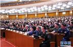 3月20日,第十三届全国人民代表大会第一次会议在北京人民大会堂举行闭幕会。这是代表在表决。新华社记者 刘卫兵 摄