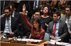 当地时间2018年4月10日,美国纽约,联合国安理会未能通过美国起草的叙利亚化武袭击调查机制决议草案。