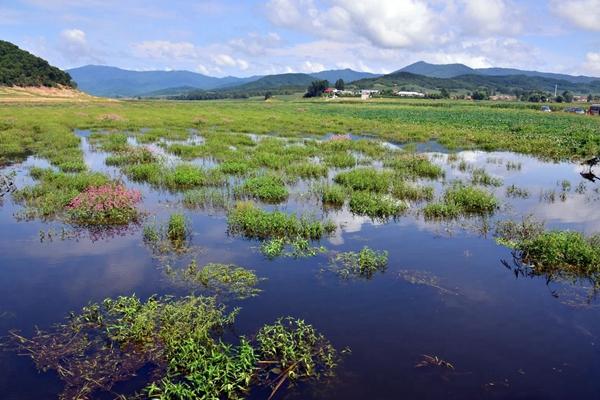 2013地方gdp_扒一下这些地方的生态账本:为何是当地GDP的几十倍