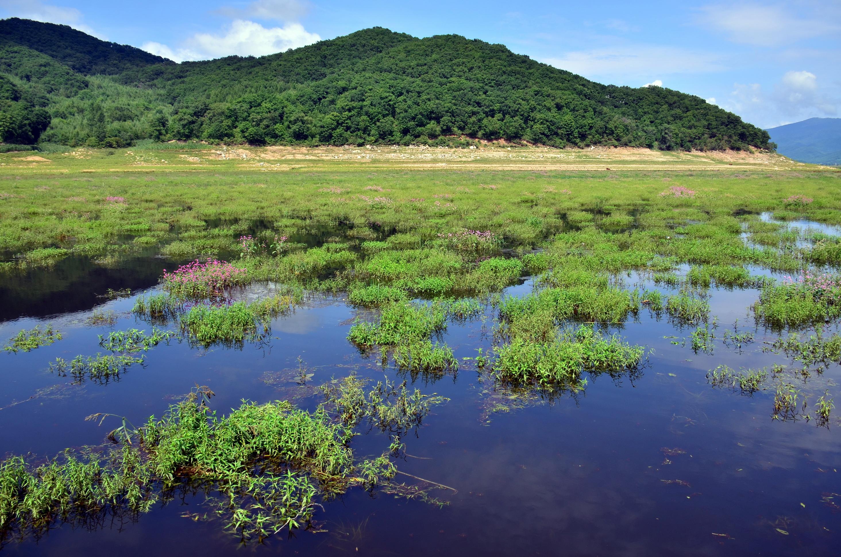 吉林省蛟河市爱林林场松花湖景色.摄影/章轲