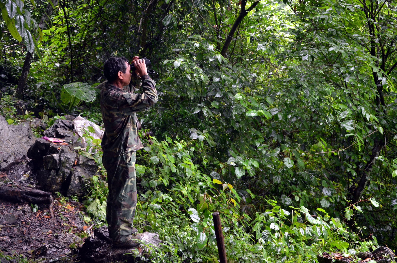 廣西邦亮長臂猿國家級自然保護區工作人員正在觀察區內情況。攝影/章軻