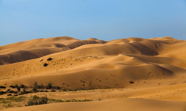 """曾经的库布齐沙漠是""""悬在首都头上的一壶沙"""",如今成为全世界防治荒漠化的样本。"""