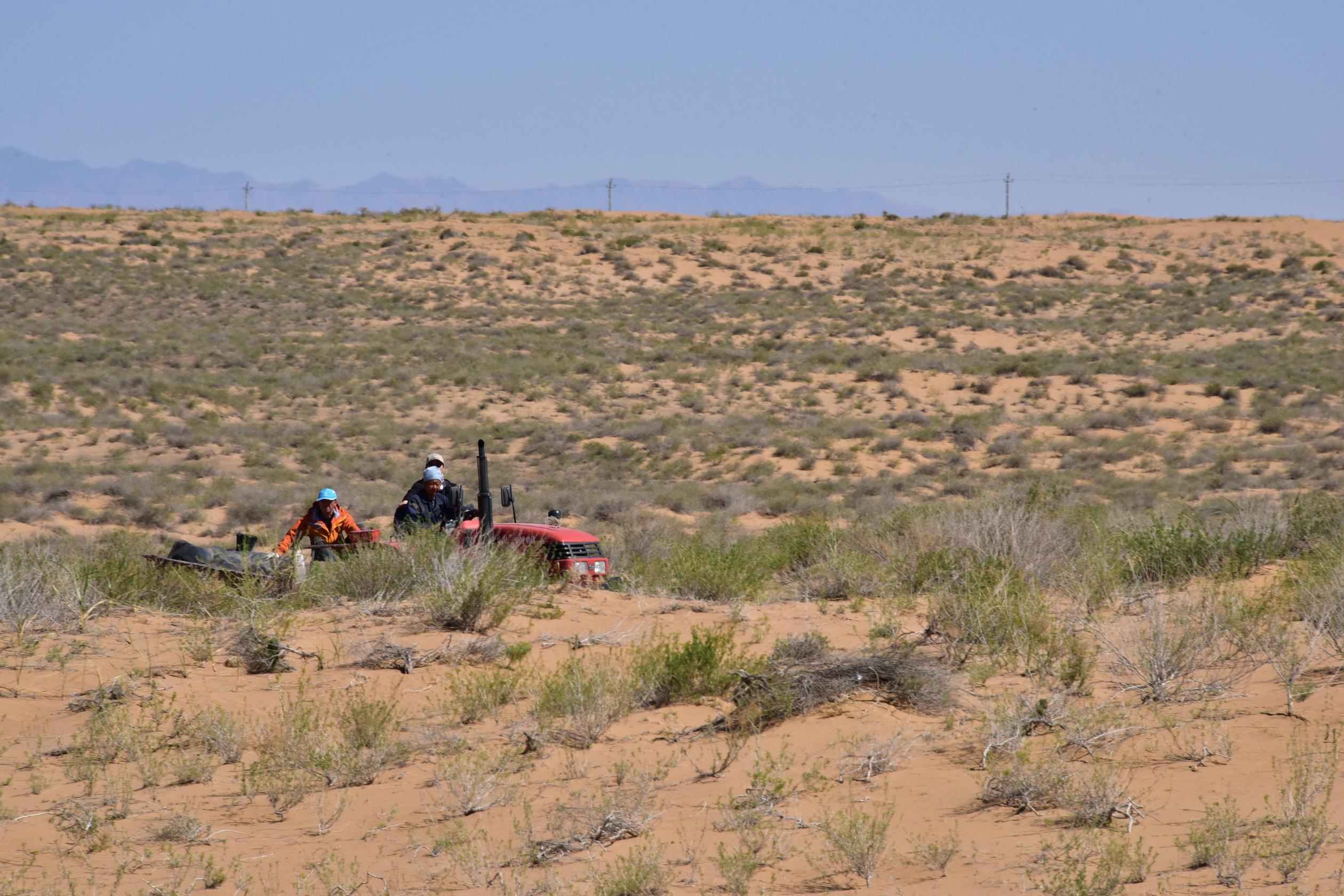一辆农用拖拉机正在沙化十分严重的内蒙古阿拉善草原上行驶。摄影/章轲