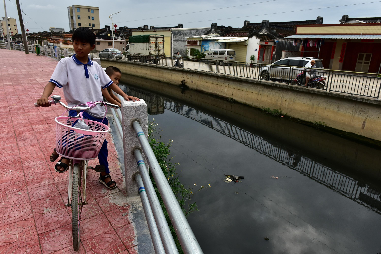 汕头市潮阳区和平镇练北村和临崑上村的练北大坑,黑臭极其严重,生活污水直排。摄影/章轲