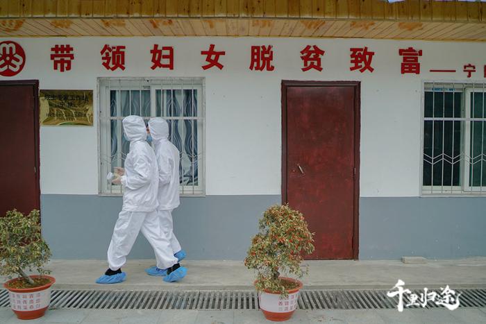 每年蜂病高发期,蜜蜂所的专家们会下到秦岭山区考察,梨子园合作社是其研究站之一。摄影记者/王晓东