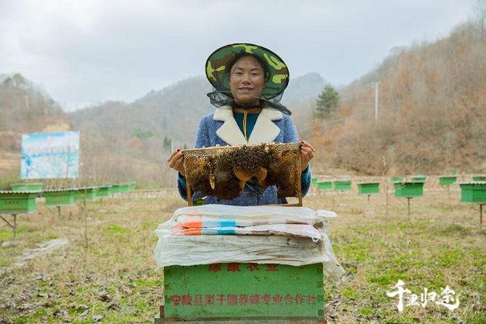 周世红与她的蜂箱。摄影记者/王晓东