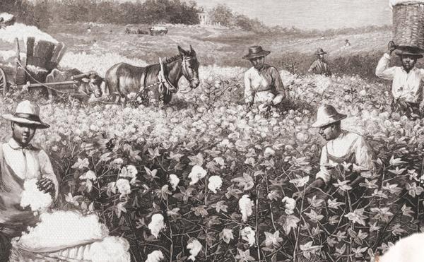 """整个现代世界,都依赖于棉纺织产业驱动的工业化进程,这是第一个进入机械化的产业,而生产之后的贸易、流通又极大地影响并重塑了一个""""新全球体系""""。 视觉中国图"""