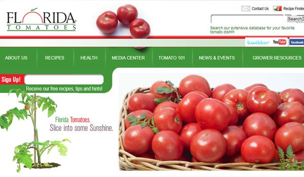 佛罗里达是美国的头号番茄种植地,有众多番茄农场主组织。图为佛州番茄委员会官网。