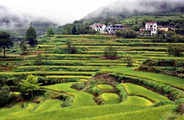 浙江省临安县的美丽乡村风光。摄影/章轲