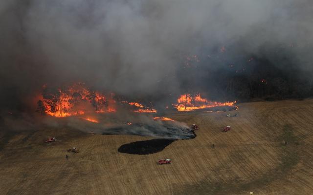 2019年12月20日,澳大利亚维多利亚州消防局消防员在维多利亚州西部的一处火点灭火。本文图表除署名外均来自新华社