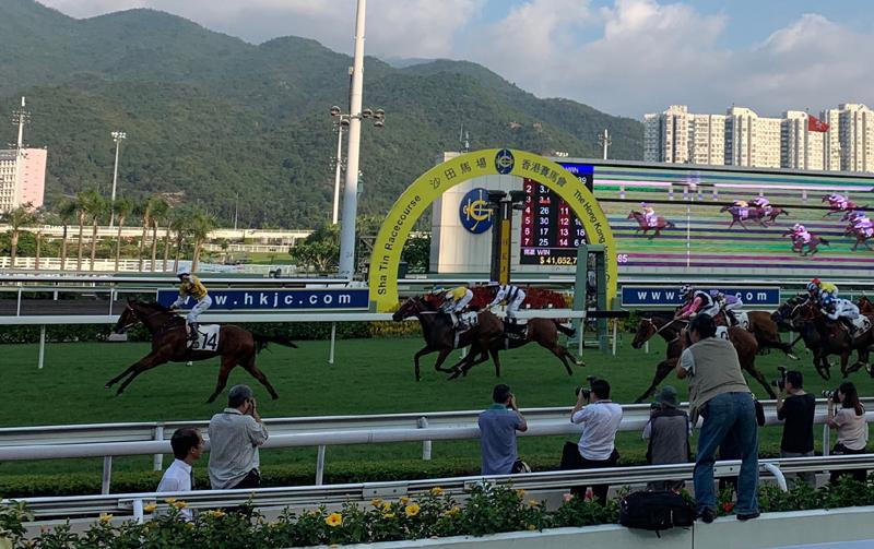 1978年,沙田马场开幕,为香港赛马运动踏出重要一步,亦为香港社会及经济发展奠下重要的基石。
