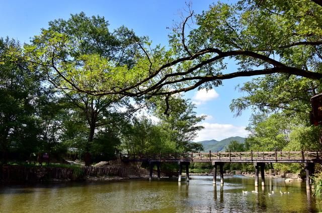 """美丽中国要达到""""空气清新、水体洁净、土壤安全、生态良好、人居整洁""""五项标准。摄影/章轲"""
