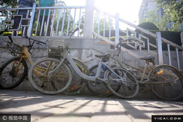 """2017年6月14日,北京东城区光明桥附近护城河成了共享单车的""""坟场"""",多辆各种颜色的共享单车被抛在河里。走访发现,共享单车已被捞上岸边,有的单车部分零件损坏,有的单车浑身长满藻类,惨不忍睹。工作人员介绍,护城河河底出现共享单车这一新的""""杂物""""已经不是什么新鲜事儿,前段时间曾清理护城河右安门附近河段,同样打捞出不少共享单车。"""