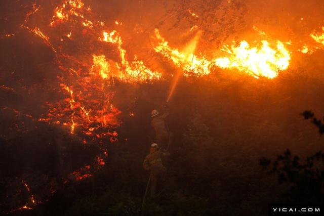 警方说,雷电击中大树导致了此次大火发生,警方已找到被雷电击中的大树。而此前有消息称,火灾可能是由于天气炎热干燥引起。葡萄牙17日多地出现高温,部分地区最高气温突破40摄氏度。图为消防员在灭火。