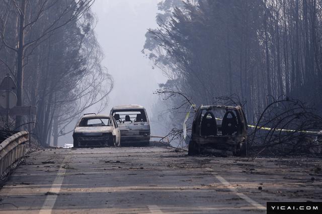 图为公路上被烧毁的车辆。