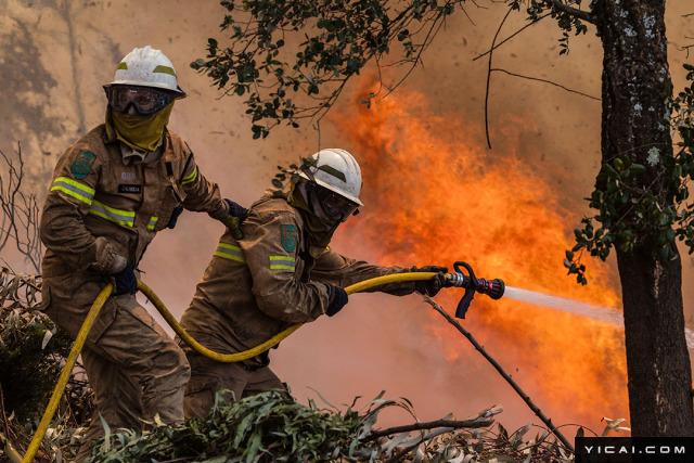 据新华社6月18日消息,葡萄牙内政国务秘书若热·戈梅斯18日说,在葡中部地区森林火灾中丧生的人数已升至62人,另有54人受伤。葡萄牙政府已宣布国家进入紧急状态,并从18日开始举行为期3天的全国哀悼。图为当地时间2017年6月18日,葡萄牙中部,消防员在现场灭火。