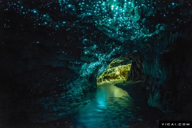 萤火虫洞,位于新西兰境内的怀托摩溶洞地区,是举世闻名的浪漫之地。洞内有成千上万只萤火虫聚集,熠熠生辉,仿似银河流动,置身其中,犹如梦境。