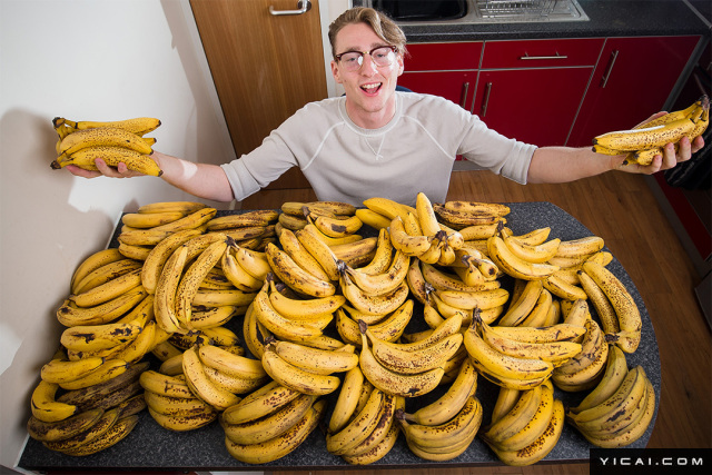 2017年8月7日讯,英国布里斯托尔,Dane Nash今年21岁,他是一名非常严格的生素食主义者,每天都会吃12份香蕉奶昔,然后还会吃10根香蕉和2磅(约1.8斤)的菠菜。Dane说,自己只吃纯素和生的食物,尽管营养学家告诉他这样的饮食对身体不好,但他依然每天坚持着这样的习惯坚决不改变。自己每天大约80%的热量摄入都是来自那些水果,每周大约会吃掉150根香蕉,他认为这种饮食习惯对自己的帮助很大,这样可以让他的身体和生活更加健康。