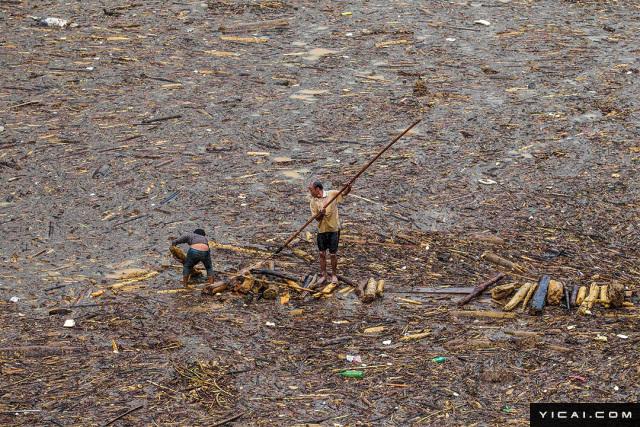 当地时间2017年8月5日,越南木江界,山洪将大量木材冲至湖中,男子在湖上打捞木材。
