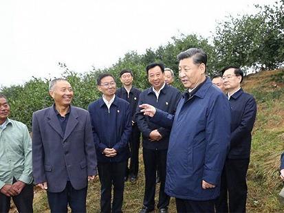 农民丰收节,且听田间习语话农桑