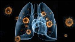 聚焦!新型冠狀病毒肺炎疫情阻擊戰