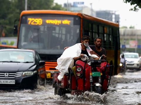 """印度汽油""""史上最贵""""民众改坐公交,政府急建20万吨洋葱储备"""