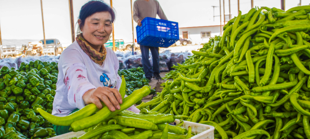 谁盯上了农产品:踹开收购商,十万亿市场腾挪