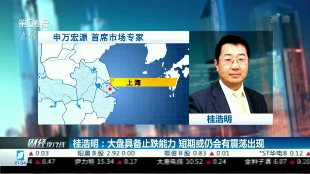 桂浩明:大盘具备止跌能力 短期或仍会有震荡出现