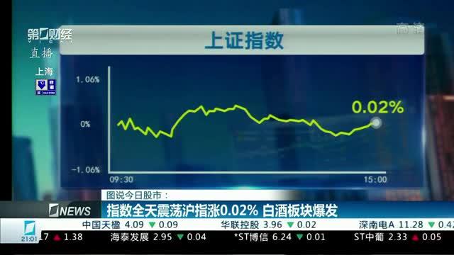 图为今日股市:该指数全日波动,上证指数上涨0.02%