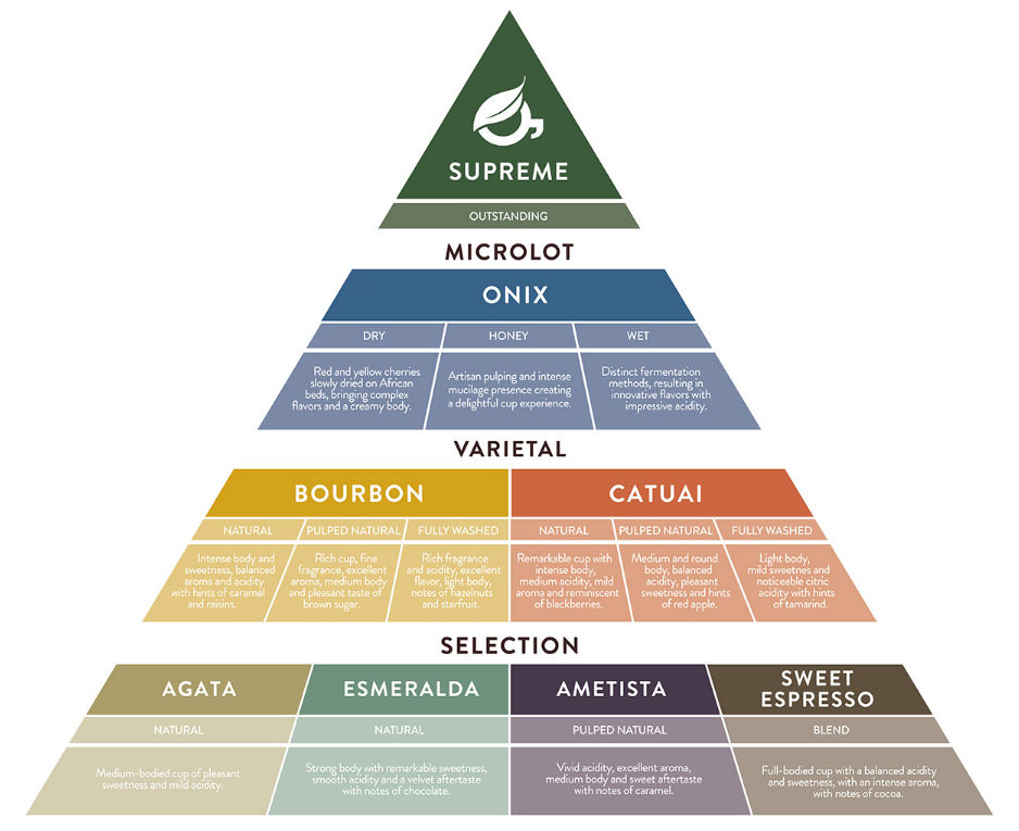 O'coffee咖啡产品的细分图