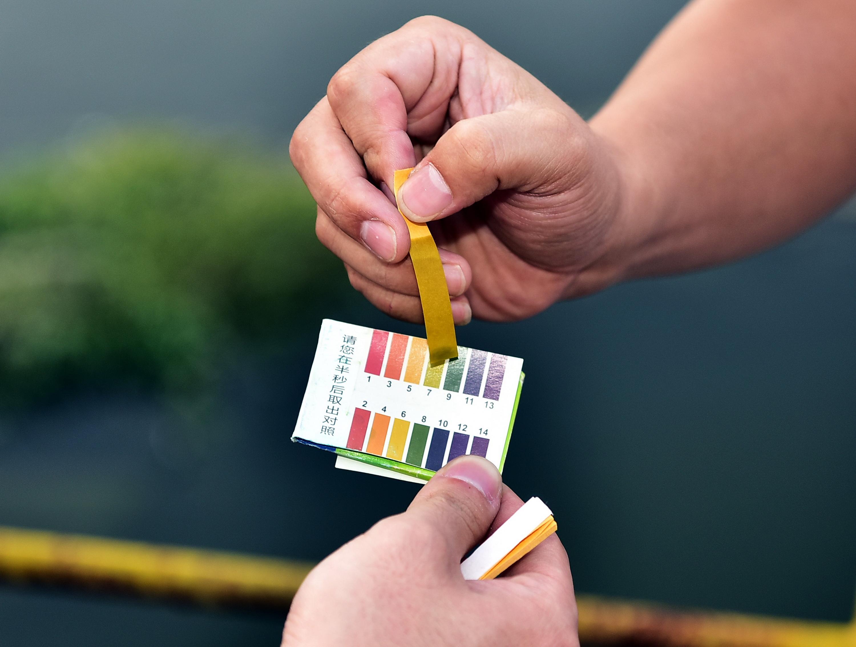 6月16日,环保人员正在对广东练江干流水质进行检测。摄影/章轲