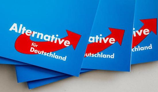 德国选择党迅速崛起。来源:德国之声