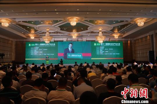 第十一届国际玉米产业大会在大连举行,王凤海在开幕仪式上致辞。 杨毅 摄