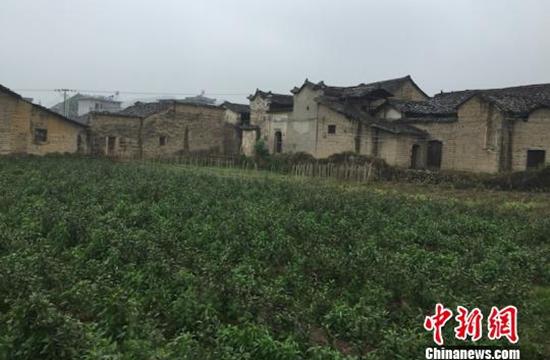 浙江松阳的传统村落。来源:中新网