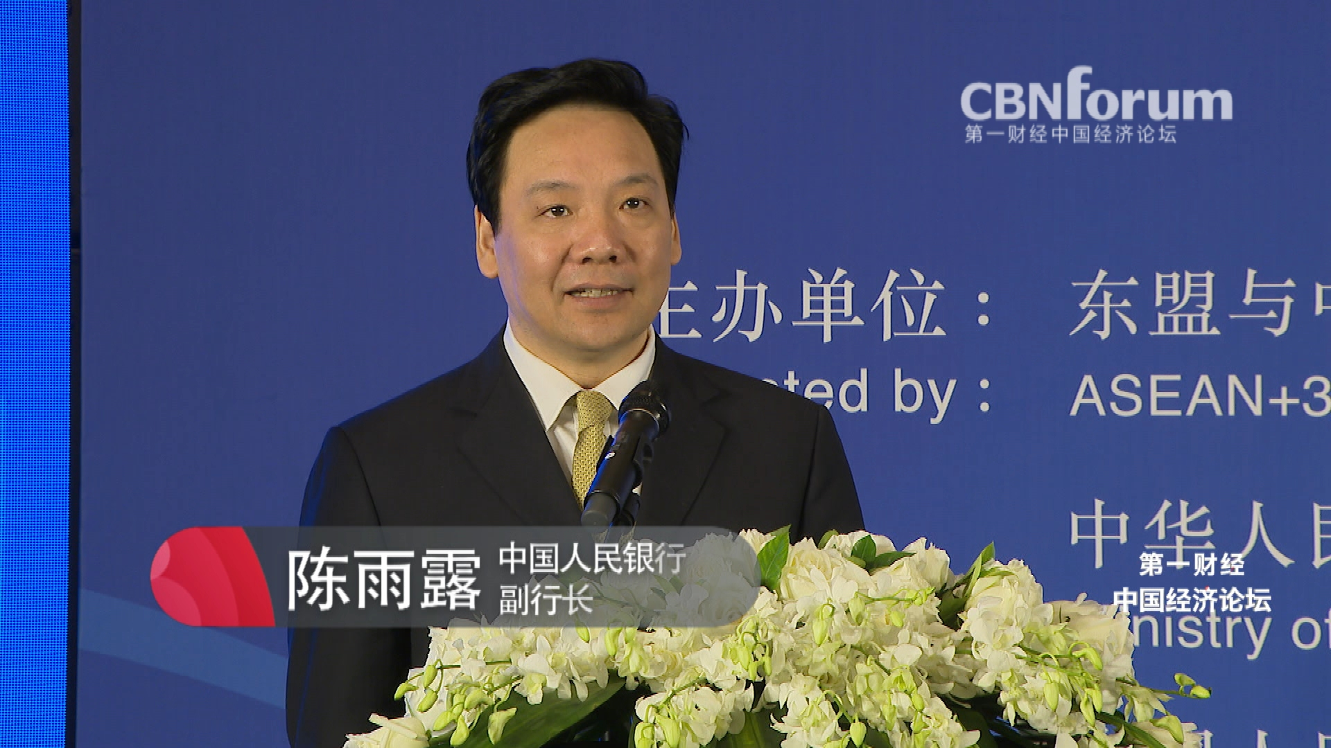 陈雨露 中国人民银行副行长