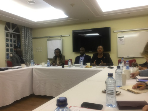 3家以推动农业发展和粮食安全为主的NGOs管理人员介绍其组织在推动农业发展方面所作的努力 (后歆桐/摄)