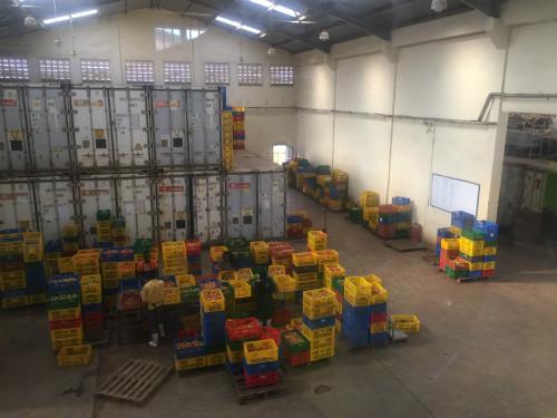 Twiga Foods仓库中有大量冷藏室,供储存香蕉 ( 后歆桐/摄)