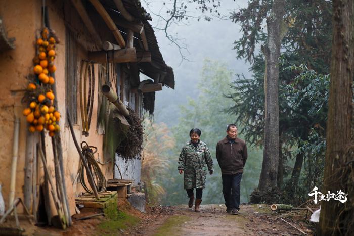 平江县大洞村罗导生、杜妹英的生活一度非常贫困,誉湘和碧桂园收购了老两口种植的农作物和养殖的猪仔,帮助他们走出困境。 摄影记者张健