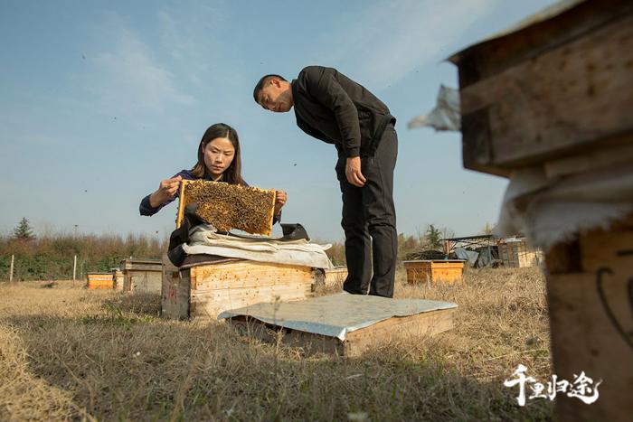 周世红与汉中的养蜂大户易天明交流养蜂技术。摄影记者/戴茜