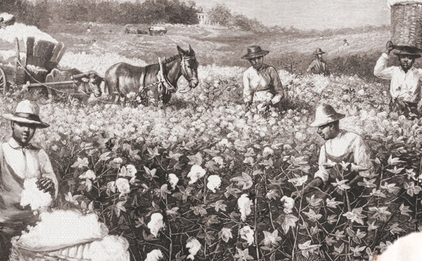 """整个现代世界,都依赖于棉纺织产业驱动的工业化进程,这是第一个进入机械化的产业,而生产之后的贸易、流通又极大地影响并重塑了一个""""新澳门银河国际网站体系""""。 视觉澳门银河唯一官网图"""