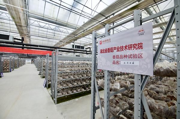 无限极构筑三重防线 助力中国消费升级体验