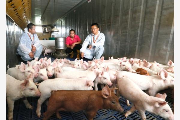 山东一处养殖户正在向技术人员了解相关知识。新华社资料图