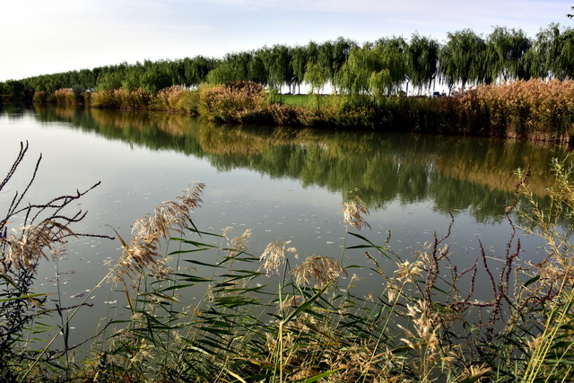 陕西省是我国湿地资源较为贫乏的省份之一。摄影/章轲