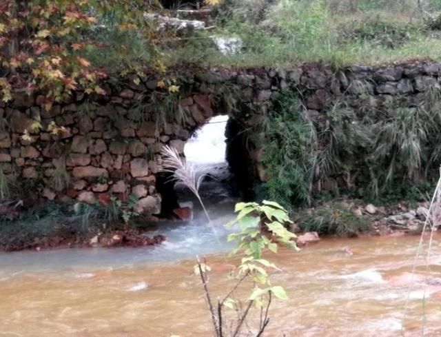 鱼洞某煤矿遗留矿井出水点。资料来源:中央环保督察组