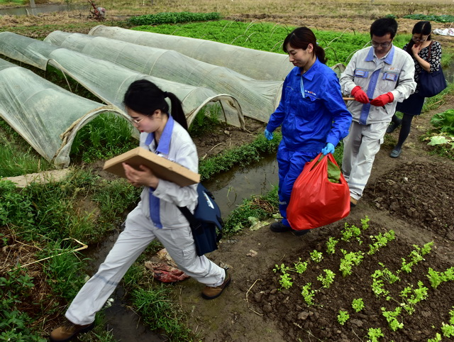 宁德核电监测人员在硖门畲族乡蔬菜种植地取样。摄影/章轲