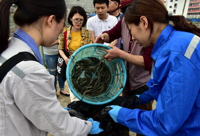 宁德核电监测人员在硖门畲族乡水产养殖地取样。摄影/章轲